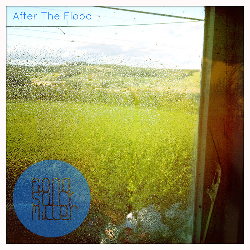 after-the-flood-cover.jpg